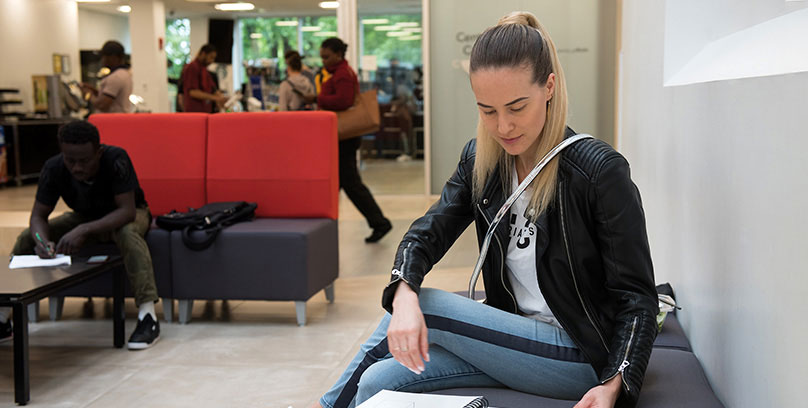 Students studying at the lounge